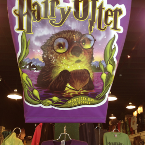 harry potter otter